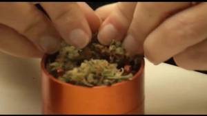 Legal Cannabis, how it's going to be dispensed in Ontario.