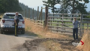 Some residents defy wildfire evacuation order near Summerland