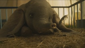 New movies reviews: Dumbo, The Mustang, Giant Little Ones, The World Before Your Feet, Beach Bum