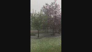 Lacombe area hit by hail