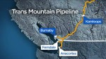 Ottawa's purchase of Trans Mountain pipeline could hinge on Donald Trump
