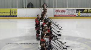 Ontario Junior Hockey League holds minute of silence for Humboldt Broncos after fatal crash (01:38)