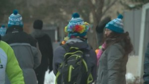 Hundreds brave cold for charity