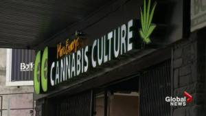 Canadian marijuana legalization timeline
