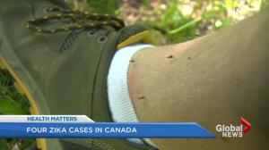 Two people in B.C. infected with Zika virus