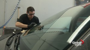 'I'm going for the gold!': Calgary windshield repairman trains for world championship