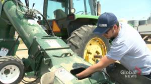 Canada's Farmers' net income nearly cut half in 2018