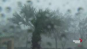 Hurricane Michael: Panama City in Florida hit with strong winds, heavy rain