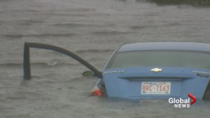 Alberta man helps rescue adults, baby from car in pond