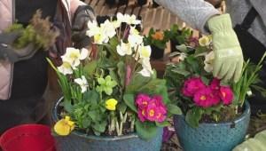 GardenWorks: Spring Planter