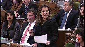 Conservative MP calls Canadian retaliatory tariffs 'dumb' during QP