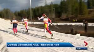 Calgary Chamber of Commerce endorses 2026 Olympic bid