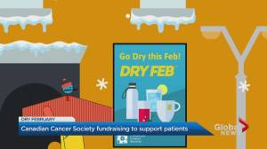 Fundraiser challenges Canadians to go alcohol-free in February (02:53)