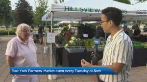 East York Farmers' Market reopens
