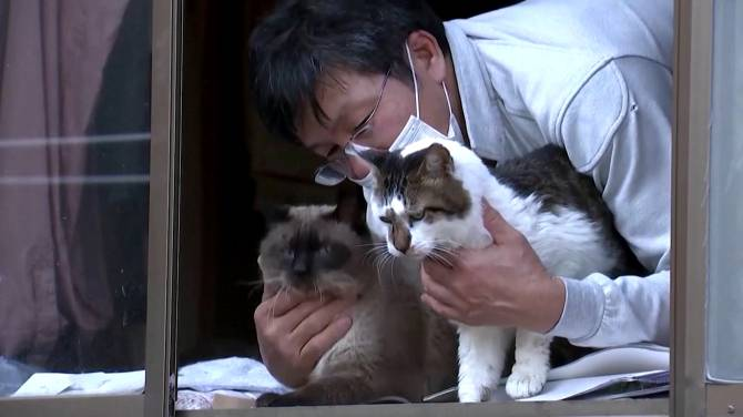 Click to play video: Fukushima anniversary: Whatever happened to the pets left behind?