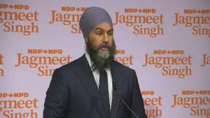 NDP sees little growth in election, still holds balance of power (02:00)