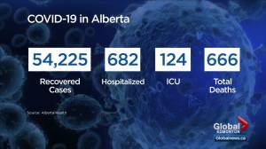 Alberta records 1,566 new cases as Hinshaw asks for compassion over holidays (02:22)