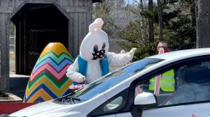 New Brunswick adapting Easter celebrations due to COVID-19 (01:31)