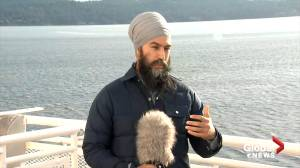 Federal Election 2019: Singh says he'll stand up to Trump