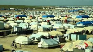 Turkey says will begin repatriation of ISIS prisoners