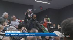 Protest turns violent during pro-Israel event at York University