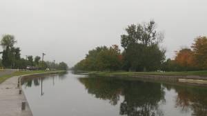Peterborough Regional Weather Forecast, October 8, 2021 (01:48)