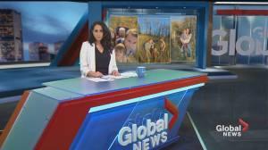 Global News Morning headlines: Wednesday, October 21, 2020