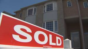 Feds face pressure over hot housing market ahead of 2021 budget (03:00)