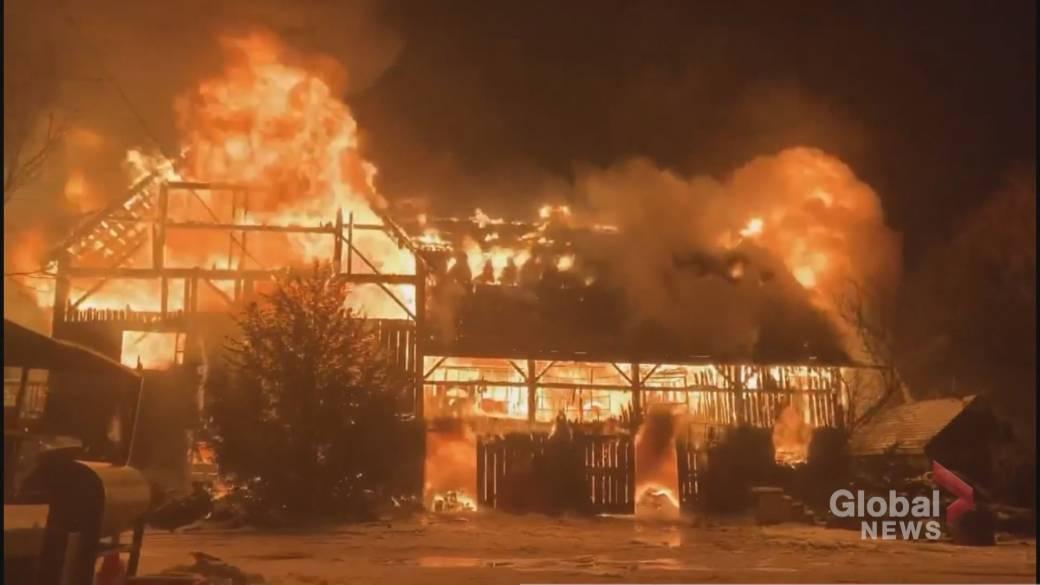 'Fire astatine  Mount Albert workplace  destroys historical  barn'
