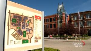 SAIT students return to smaller classes as temporary layoffs announced and some programs deferred