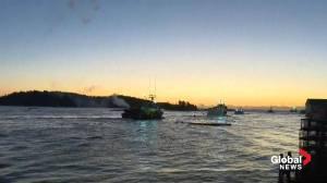 Canada's largest commercial lobster season kicks off in Nova Scotia