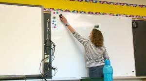 Half of Manitoba teachers prepared to quit or retire: union (02:01)