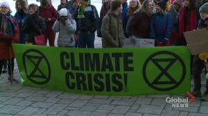 Protestors in Fredericton held another Fridays For Future climate rally