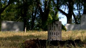 'A sendoff back to nature': Montreal cemetery offers green burials (02:07)