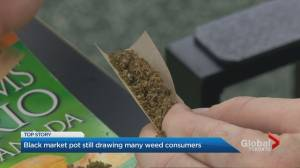 Black market still drawing many cannabis consumers