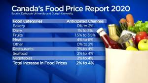 Grocery bills set to increase for Canadians: report (02:18)