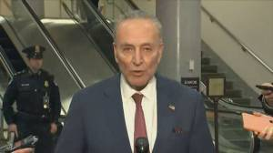 Schumer says Senate 'turned away from truth' by voting down witnesses in Trump impeachment trial