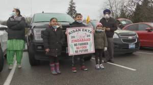 B.C. farmers organize New Year's Day convoy to show solidarity (01:06)