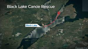 Stranded Saskatoon canoeist, dog rescued by military aircraft (01:10)