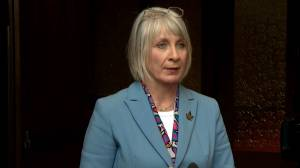 Coronavirus outbreak: Health Minister warns of 'significant penalties' if COVID-19 quarantines violated
