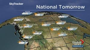 Edmonton weather forecast: Feb 6 (03:08)