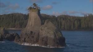 Coastal Experiences: Haida Gwaii (04:53)