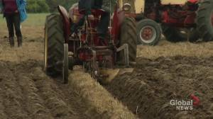 Peterborough County Plowman's Association holds 101st annual plowing match