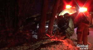 Peterborough man charged with impaired after car crashes into tree (00:38)