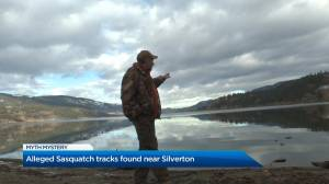 Bigfoot or moose: experts analyze tracks left behind (02:18)