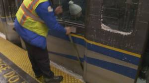 TransLink provides update on Metro Vancouver snowstorm