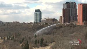 Spree of grass fires break out in Edmonton's river valley on Friday (02:51)