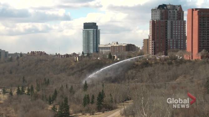 Click to play video: Spree of grass fires break out in Edmonton's river valley on Friday