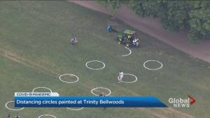 Social distancing circles added to Toronto's Trinity Bellwoods Park