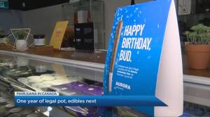 1-year  anniversary of marijuana legalization in Canada, but black market stealing the headlines